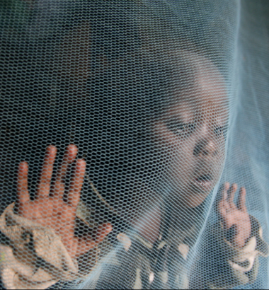 Despite great progress, malaria still kills almost 1,500 children every day in sub-Saharan Africa. Many deaths could be prevented by mosquito nets like the one protecting Siama Marjan in Nairobi, Kenya, but the $5 cost is more than many Africans can easily afford. (Newscom)