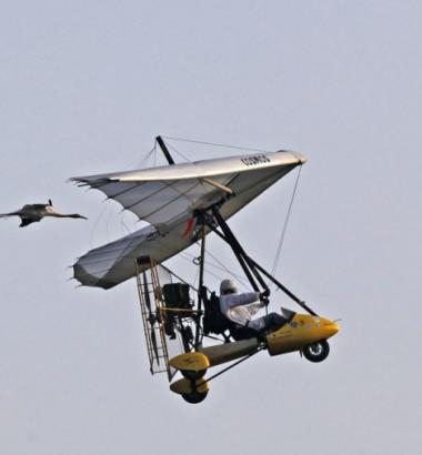 In a wildlife refuge in Necedah, Wisconsin, whooping cranes raised in captivity practice flying behind an ultralight aircraft. Come October, Operation Migration pilots will guide the birds on a 1,285-mile fall migration from Wisconsin to Florida. (Jeffrey Phelps / Aurora Photos / Corbis)