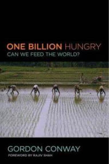 Feeding the Masses  Image