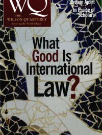 What Good Is International Law? Cover Image